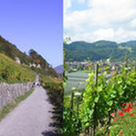 Kanton St. Gallen. Vergrösserte Ansicht